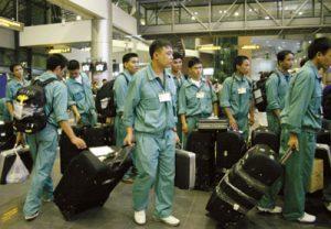 Dịch vụ xin giấy phép lao động cho người nước ngoài tại Việt Nam tư vấn thủ tục miễn phí