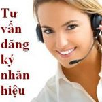 Tư vấn đăng ký bảo hộ nhãn hiệu hàng hóa tại Việt Nam