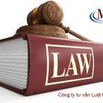 Công ty tư vấn luật tại quận Đống Đa