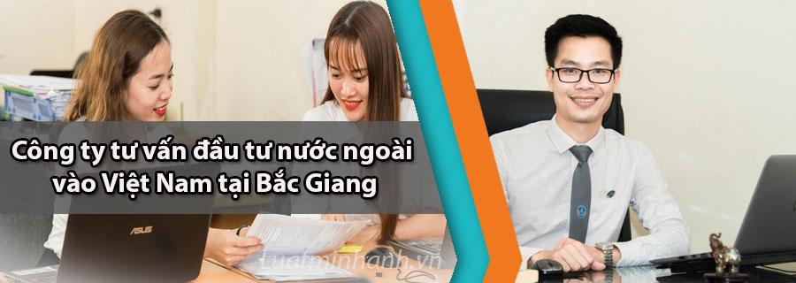 Công ty tư vấn đầu tư nước ngoài vào Việt Nam tại Bắc Giang